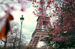 фрагмент ейфелевої вежі, ліхтар, дерева, червоні листя, осінь в парижі