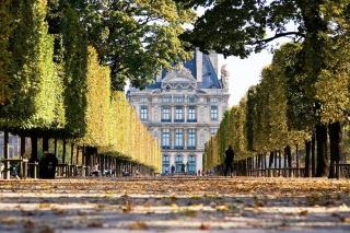 будівля, Алея, засіяна опалим листям, стрижені дерева, огорожа, лавки, люди, осінь в парижі