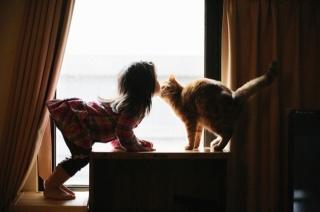 окно, девочка, кошка. ух, ты ж, моя красотулечка