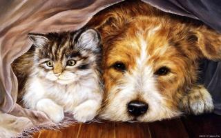 кот и пес под одной скатертью, нам хорошо вдвоем, рисованные обои