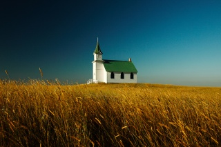 nature, the Church, field, the sky, photo, beautiful