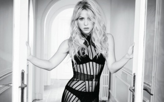 Shakira, Shakira, singer, blonde, long hair, view, black and white, black dress, underwear, shoulders, Door, belly