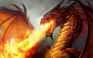 фэнтези, дракон, злость, Пламя, огня, арт, работа, серый фон