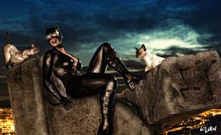 Женщина-кошка, Женщина Кошка, Женщина-КошкаКомикс, кошки, ночь