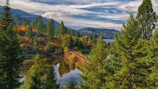 залізничний дорога, ліс, осінь, вода