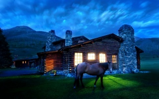 the house, light, horse
