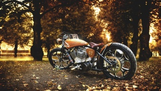 HARLEY-DAVIDSON, the bike, nature, autumn, macro, photo, theme, Park, leaves, trees
