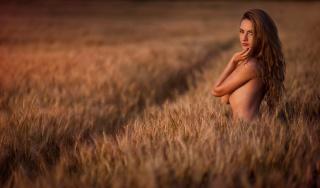 девушка, шатенка, позирует, в поле, пшеница, ситуация, минимализм, макро, фото, красиво