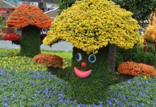 květiny, váš záhonek, šťastný houba