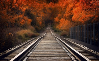 railway, road, the way, macro, photo, nature, autumn, the bridge