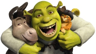 Shrek, donkey, cat, cartoon, animation, shrek