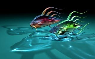 art, fish, fish, two, glass, transparent, shadow