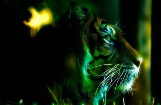 tiger, photoshop, art, work, predator, the dark background, 3D, 3d