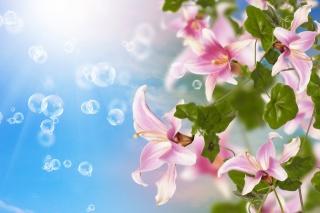 Lily, flowers, photoshop, bubbles, 3D, 3d, work