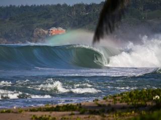 ostrov Barbados, surfování, vola, oceán, zeleň, krása