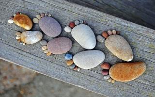 stones, traces, tree