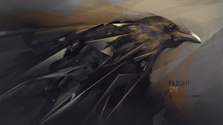Raven, desktopography, hq wallpaper, flight on