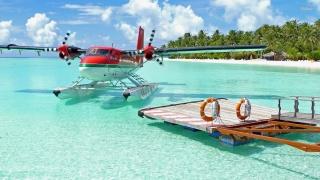 океан, песок, пальмы, остров, самалет, небо