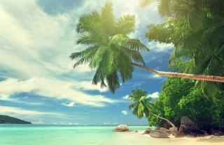 тропики, лето, сейшельские острова, сейшелы, Индийский, океан, красиво, рай, пальмы, пляж, камни, небо, облака, тропики, Сейшельские острова, Индийский океан, рай, пальмы, пляж, камни, небо, облака