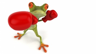 Free frog 3d, frog, graphics, Boxing, gloves