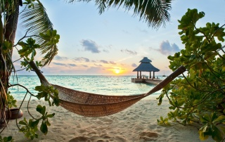 summer, house and comfort, tropics, palm trees, hammock, the rest, resort, Paradise, the ocean. tropical, paradise, beach, palms, the sky, sunset, beautiful