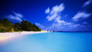 nature, evening, resort, tropics, palm trees, the beach, The Maldives, island