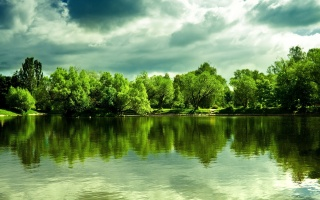 nature, summer, the lake, trees, the sky, cloudy, summer