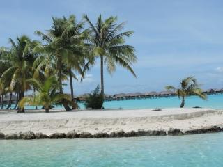 море, пляж, тропіки