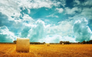 природа, поле, стіг, Сена, небо, хмари, голландія, дерева, красиво
