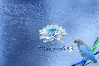 windows 8, blue
