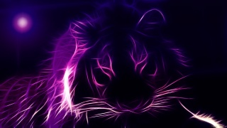 tiger, photoshop, the dark background, fantasy, violet, 3d
