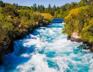 nature, river, rapid, stream, forest, beautiful
