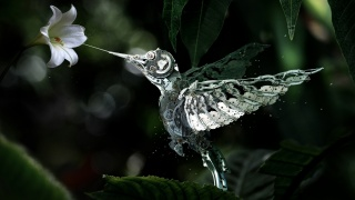 ROBOT, MECHANISM, hummingbirds, flower