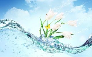 цветы, вода, фотошоп, бабочка, божья коровка, фэнтези