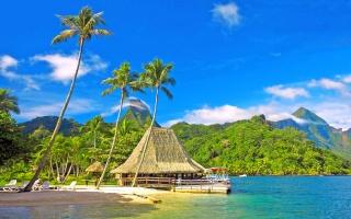 природа, тропики, бунгало, океан, пляж, курорт, горы, пальмы, дом и уют