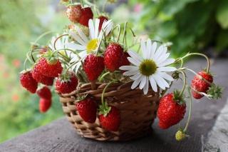 композиція шик, натюрморт, квіти, кошик, полуниця, краса