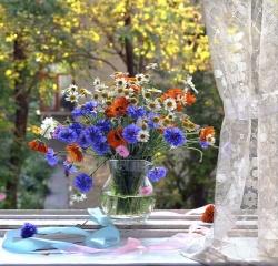композиція шик, натюрморт, квіти, ваза, вікно, краса