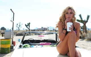 Елісон michalka, блондинка, Автомобіль, ніжки, погляд, кактуси