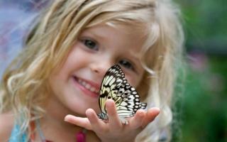 girl, hand, butterfly