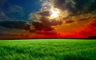 тучи, небо, лучи, облака, поле, закат, колосья