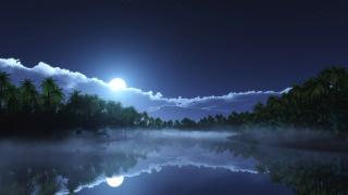 небо, луна, облака, тропики, пальмы, залив, туман