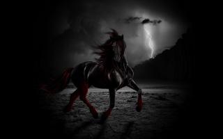 кінь, фентезі, темний фон, фотошоп, імпровізована, блискавка