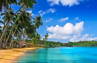 tropics, nature, the ocean, the beach, palm trees, resort, Paradise, the sky, clouds