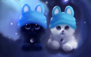 кіт, інь-янь, чорно-біле