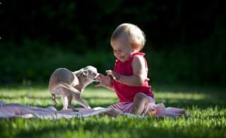dítě, s malým psem