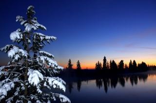 zima, nebe, západ slunce, smrk, les, řeka, sníh