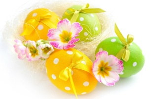Easter, EGGS, flowers, white background