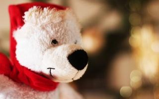 toy, bear, Santa, New year, hat, bear