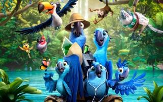 Rio 2, birds, parrots, bunch