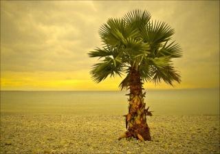 summer, Palma, the beach, pebbles, sea, the sky, clouds